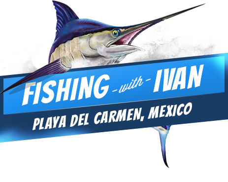 Playa del carmen fishing charters sport fishing deep for Playa del carmen fishing charters